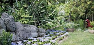 Der Botanische Garten